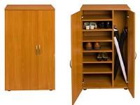 Обувной шкаф Бона-3